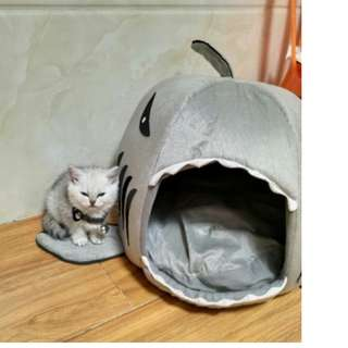 Shark Attack Pets Bed! - for Cats/ Dogs