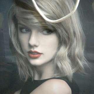 Taylor Swift Gift Bag Merchandise