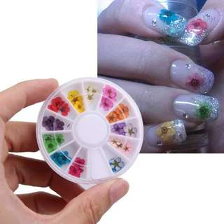 12 Color Natural Nail Dry Flowers Wheel Stickers Decals Dried Flower for Nail Art Decorations DIY 3D Manicure Tips Decal