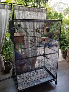 large cage with all accessories