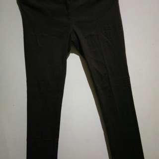 Connexion Brown Trouser