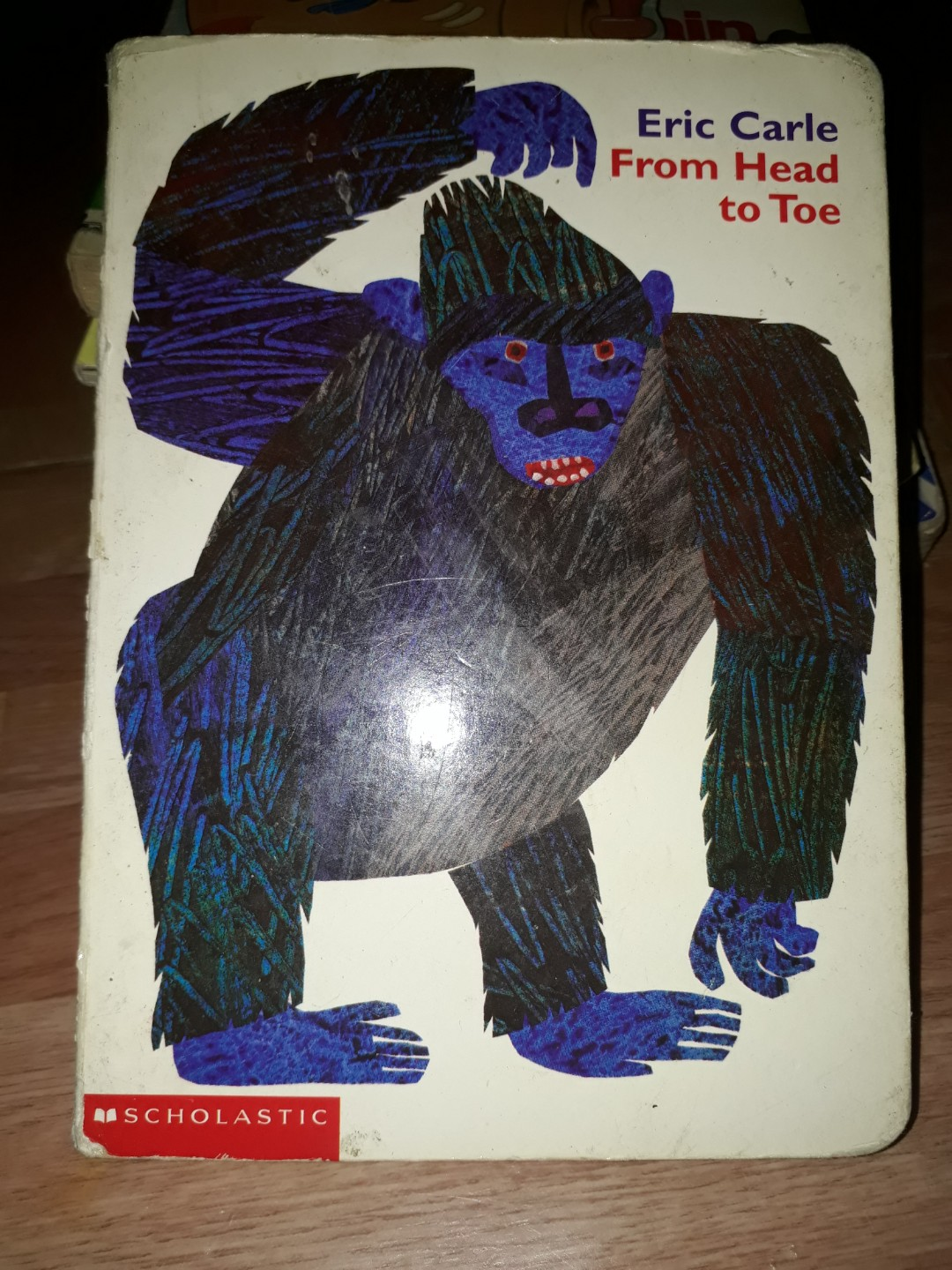 From Head to Toe book