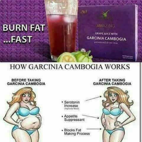 Garcinia Processing