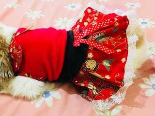 baju doggy female
