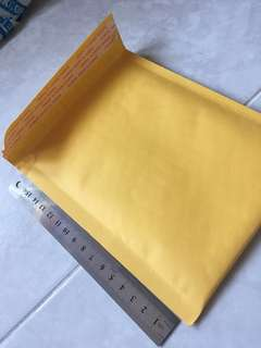 Envelope with bubble wrap linning