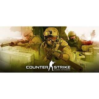 Counter Strike: Global Offensive Steam PC
