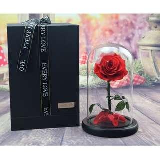 2018 Large Glass Flower Display Bell Jar Dome Immortal Preservation Love shape Glass Jar Rose Colour