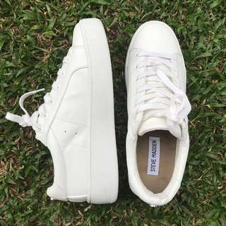 Steve Madden White Leather Sneakers