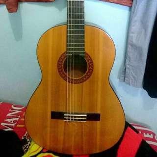 Yamaha Guitar C315
