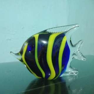 Ikan lucu #FISIPUNIS