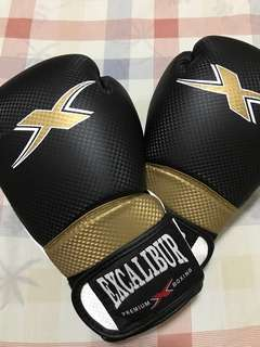 Excalibur Boxing Gloves 12 oz