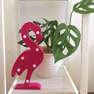 SALE! lamou LED flamingo