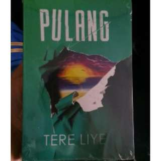 J01 Novel Pulang Tere Liye