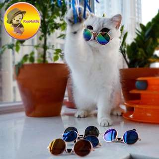 Attractive thirteen colors Pet Dog Sunglasses Multi-Color Fashionable Water-Proof Boom Cool Pet Grooming glasses New arrivals