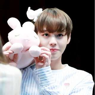 Wanna One Park Jihoon's Pink Rabbit