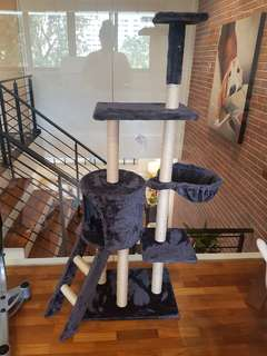 Cat tree in great condition