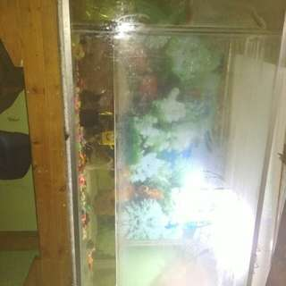 Aquarium kaca P.100cm L.50cm full set lampu dan pompa air
