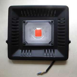 超薄輕巧 50W LED 全波段植物生長燈 補足陽光缺乏的環境或天氣