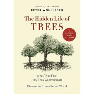 The Hidden Life of Trees: What They Feel, How They Communicate – Discoveries from a Secret World (Peter Wohlleben)