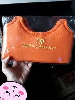 BN Walking Assistant