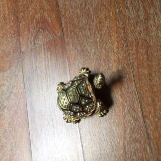 Turtle earring box