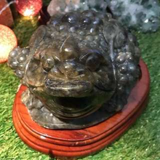 拉长石金蝉 3.77KG RARE LABRADORITE WEALTH FETCH TOAD CRYSTAL