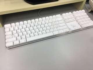 Apple 水晶 有線 keyboard (包延長線) mac, windows 適用