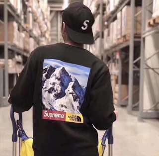 Supreme tee the north face mountain