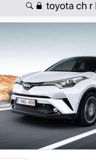 Toyota CH-R Hybrid brand new for rental