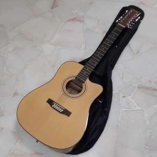 Deviser 12 string guitar