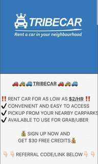Tribe car rental