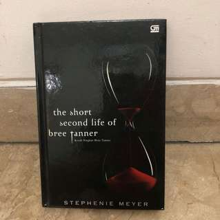 Novel by Stephenie Meyer