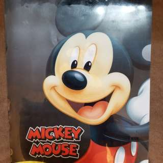 Mickey Mouse file