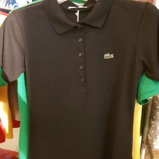 Bnwt ladies lacoste black polo tee S to XL