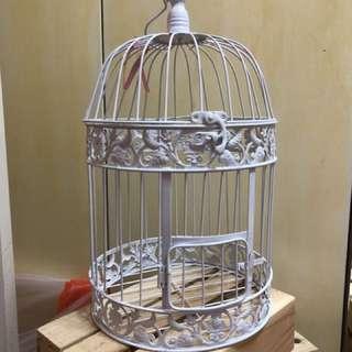Bird Cage for decor
