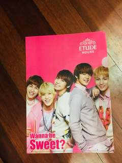 SHINee Etude House File Folder