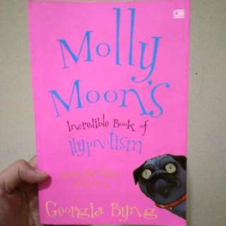 Novel Molly Moon