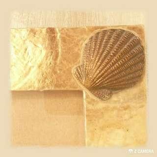 罕有 天然貝殼 5R相架/框