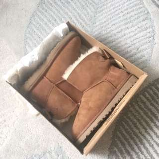 Uggs brand new in box