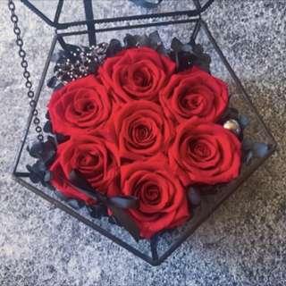 法式經典7朵玫瑰花玻璃盒(永生花)