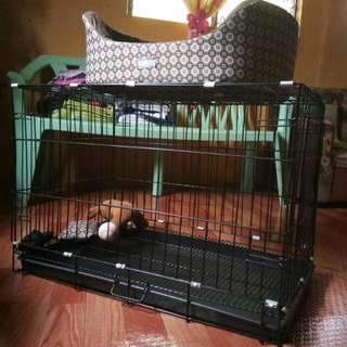 Dog cage with poop tray (Collapsible/Foldable)