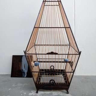 Jambul bird A cage 15s