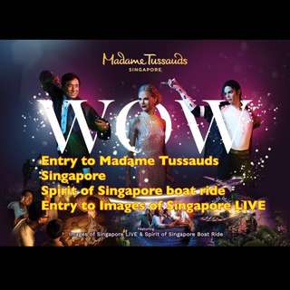 MADAME TUSSAUDS SINGAPORE COMBO 3IN1