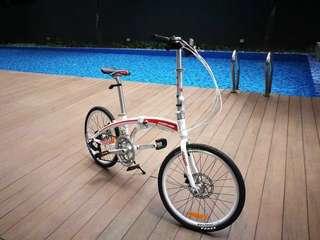 Small bike (永久牌自行车,高品质)