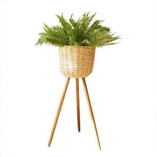 Vintage Country Rustic Standing Plant Pot (Detachable Legs)
