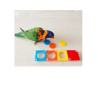 In Stock!  Parrot Cognitive Intelligence Toy