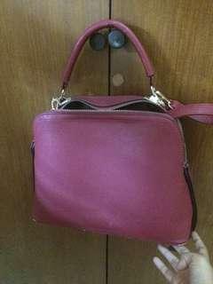 Le Femmes Bag