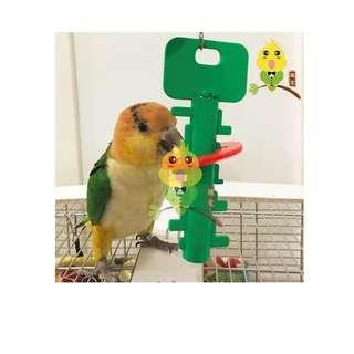 Parrot 'Unlock the Key' Puzzle