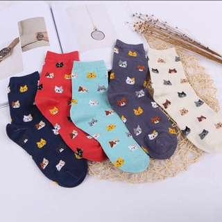 Cute Kittens Socks