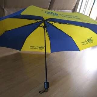 Foldable Umbrella